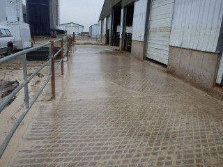 Grooved Concrete on Farm