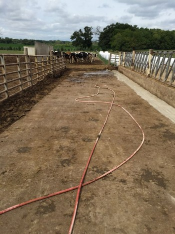 Dairy farm feed pad without grooved concrete