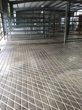 Veterinary clinic safety grooved floors